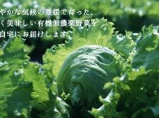 アプリで野菜を育ててもらう!