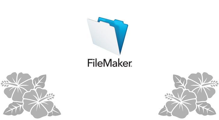 ファイルメーカーシステム開発